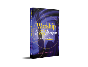 Worship to End Abortion book cover